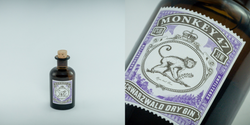 Black Forest Distillery: Monkey 47
