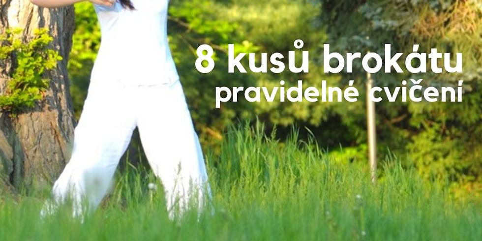 Osm kusů brokátů pro začátečníky a mírně pokročilé - pravidelné cvičení