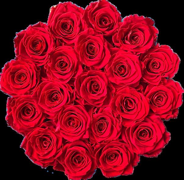 FlowerBox / Rouge  / Moyenne