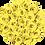 Thumbnail: FlowerBox / Jaune Canari / Moyenne
