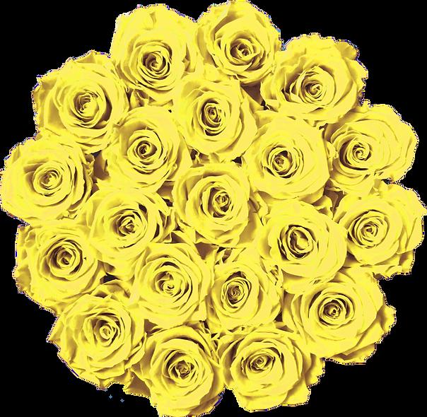 FlowerBox / Jaune Canari / Moyenne