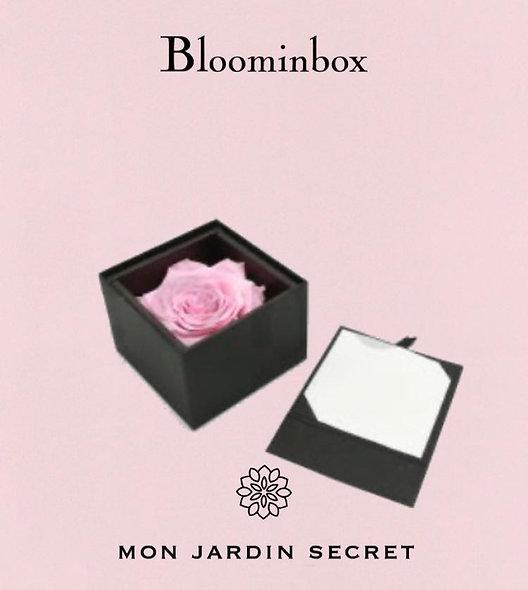 Bloominbox