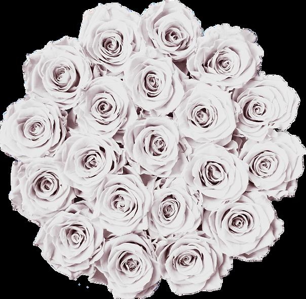 FlowerBox / Blanc pur / Moyenne