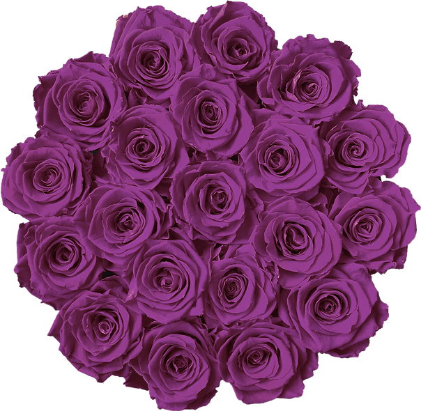 FlowerBox / Violet / Moyenne