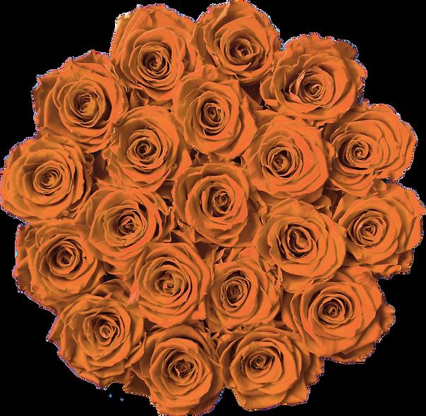 FlowerBox / Hermès / Moyenne
