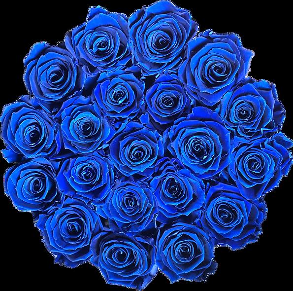 FlowerBox / Bleu Roi / Moyenne
