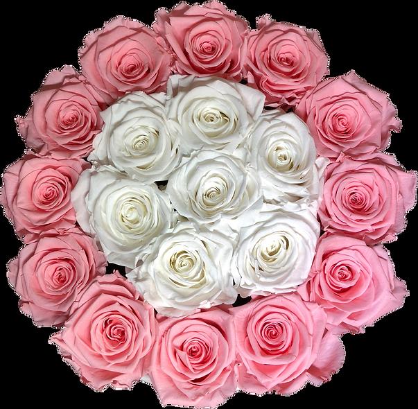 FlowerBox / Rose Baby Rond-Blanc  / Moyenne