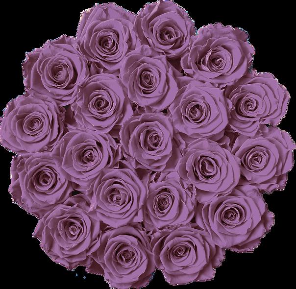 FlowerBox / Lilac / Moyenne