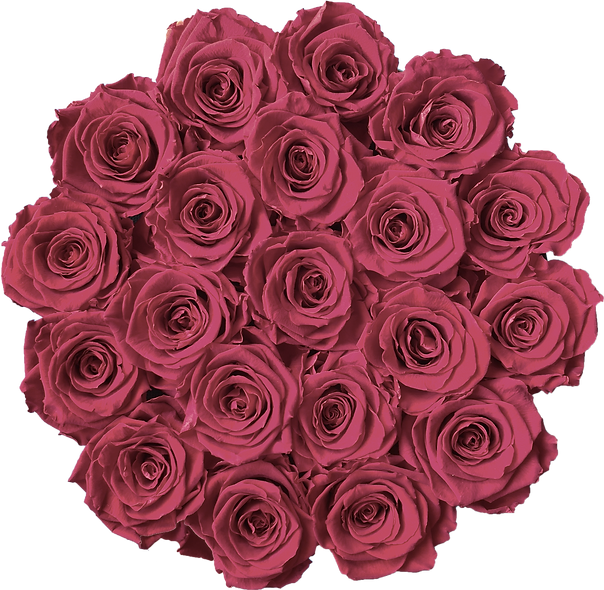 FlowerBox / Framboise / Moyenne
