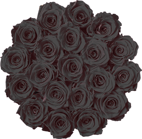 FlowerBox / Noir / Moyenne