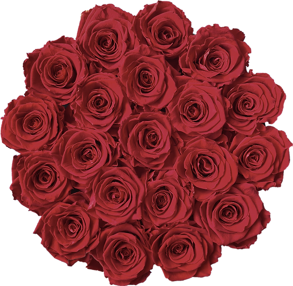 FlowerBox / Rouge Bordeau / Moyenne