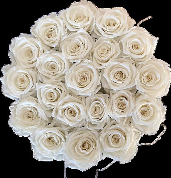 FlowerBox / Ivoire / Moyenne