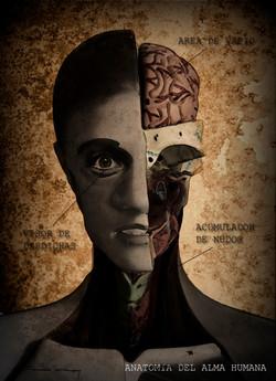 Anatomia del alma 2