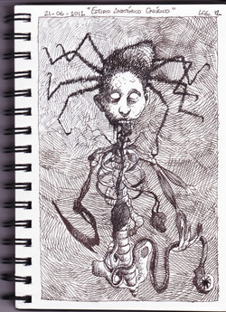 Estudio anatómico onírico