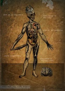 Anatomia del alma 1