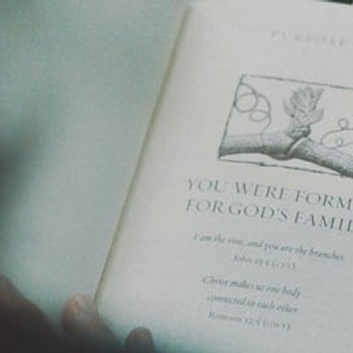 GracePoint Stories