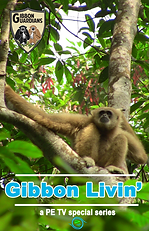 Gibbon Livin Cover.png