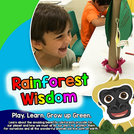 Rainforest Wisdom.png