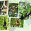 Thumbnail: Gibbon Poster - You Choose any 4 for $30.00