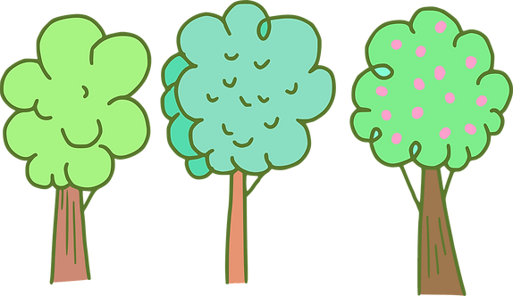 trees-5949486_1920.png