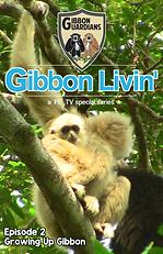 Epsidoe 2 Growing up gibbon.png
