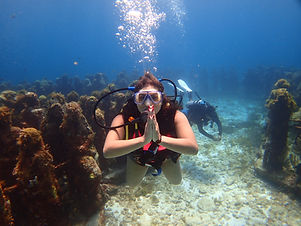 Certifid divers go diving cancun