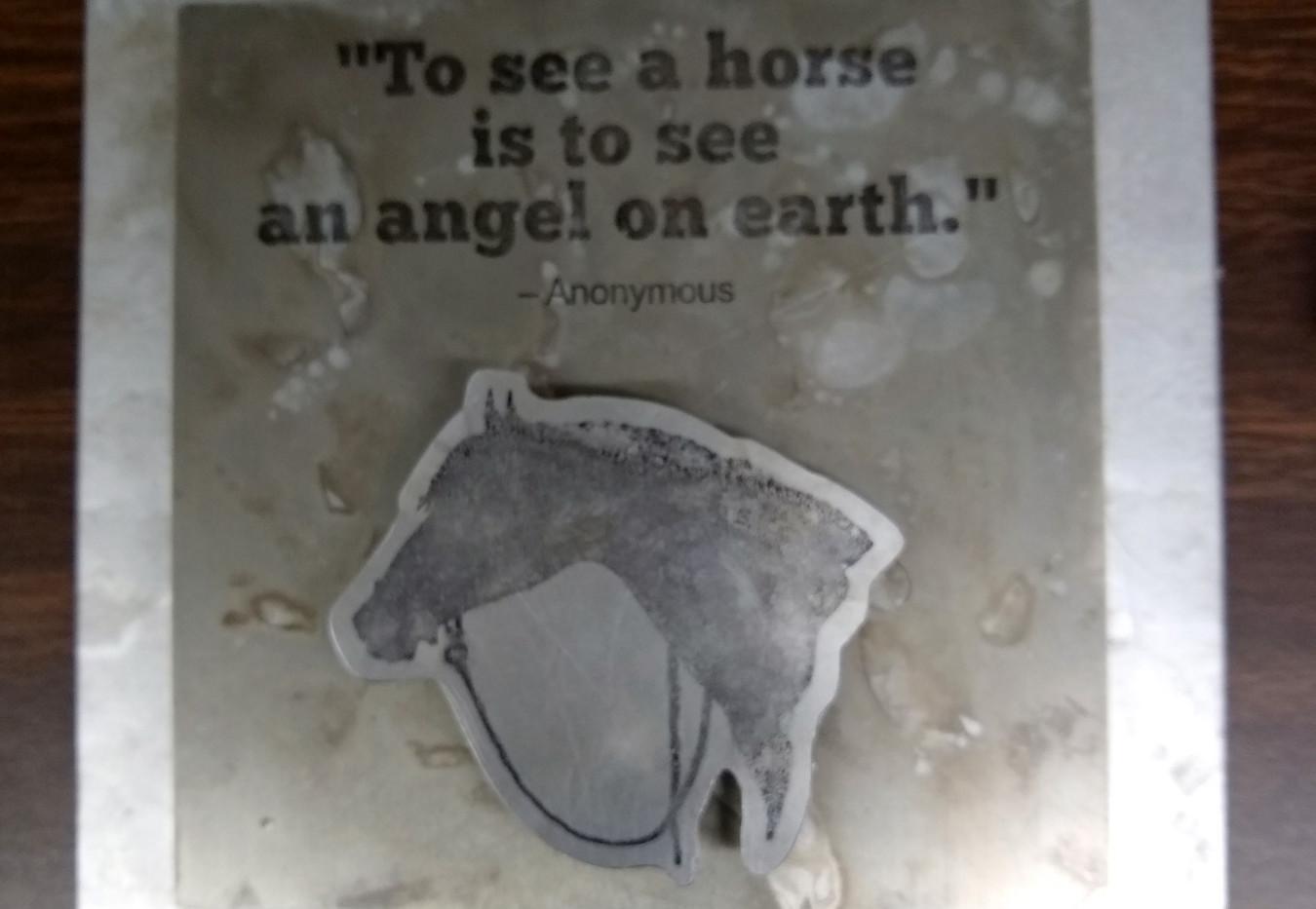 Horse - Angel.jpg