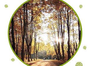 rsz_den-stromov.jpg
