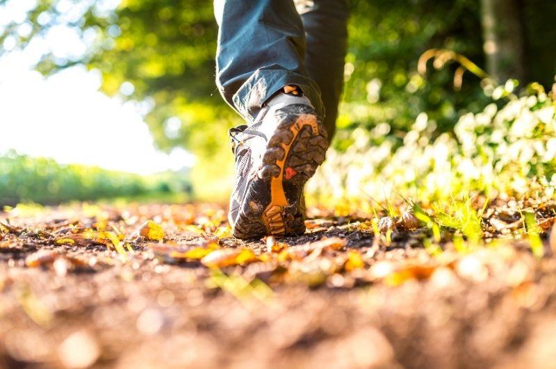 prechádzka v prírode