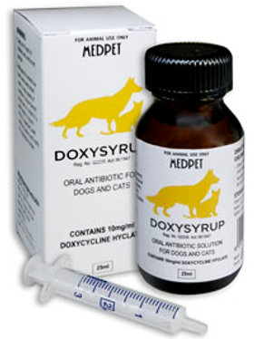 Doxysyrup for Dogs and Cats