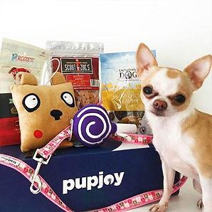 pupjoy-subscription-box.jpg