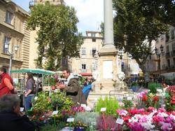 Marktbesuch in Carpentras