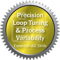 Precision Loop Tuning and Process Variab