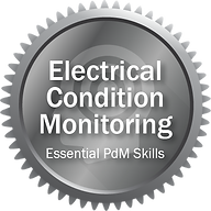 Electrical Condition Monitoring.png