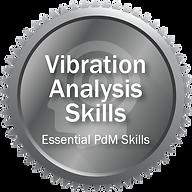 Vibration Analysis Skills.png