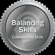 Balancing Skills.png