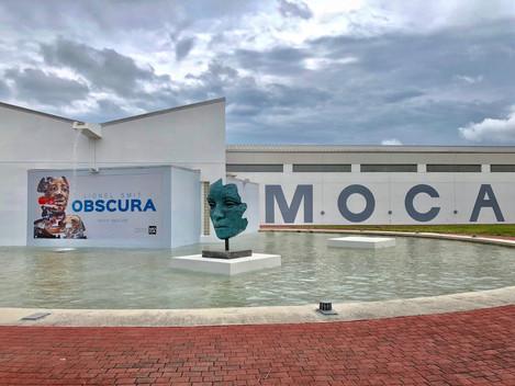 Artonauta: Lionel Smit (SA) MOCA 2018 exhibition