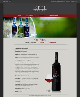 005_Our wines_cabsauv.jpg