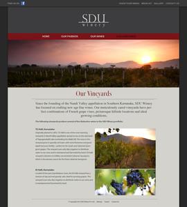 006_our vineyard.jpg