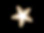 étoile2.001.png