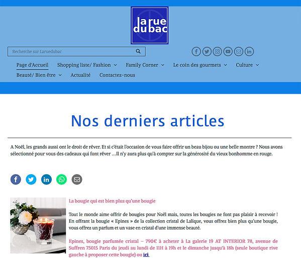 LARUEDUBAC-article-presse-architecte-int