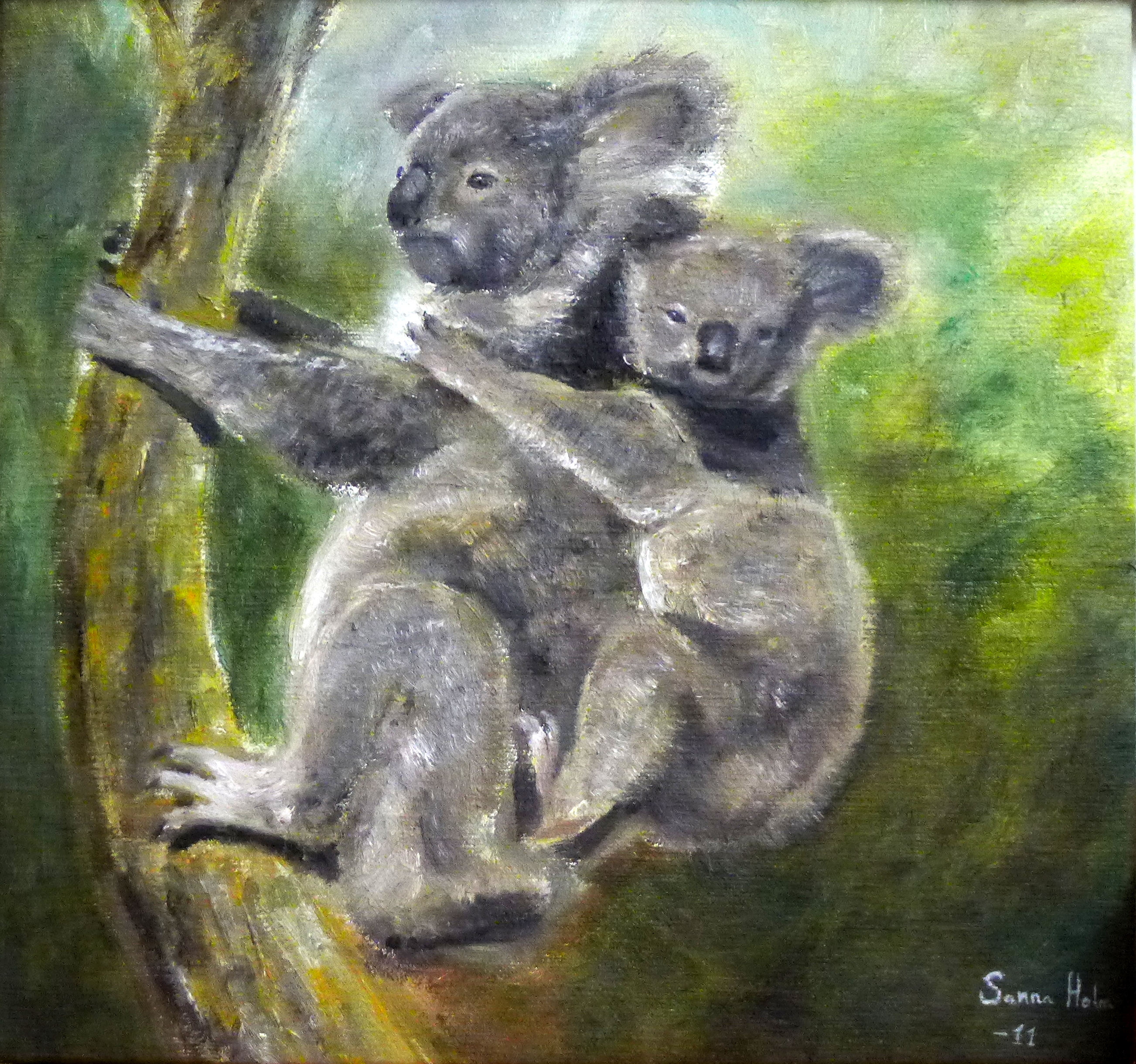 Koalas @ Sanna Holm