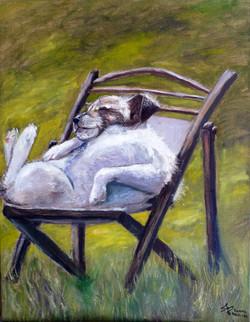 Lazy dog - ©sanna holm 2014