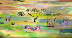 Antiloper savanne klint