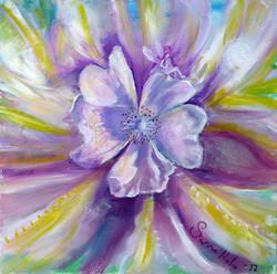 flower power - ©sanna holm 2014