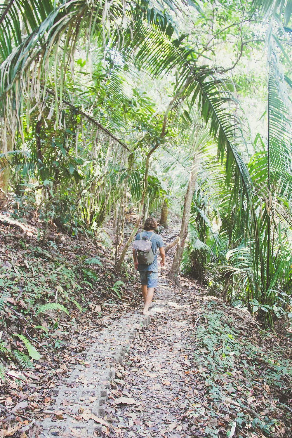 Costa Rica, Wild & Free Adventures, Philly Lewis, Alan Stokes, Santa Teresa, surf and yoga retreat