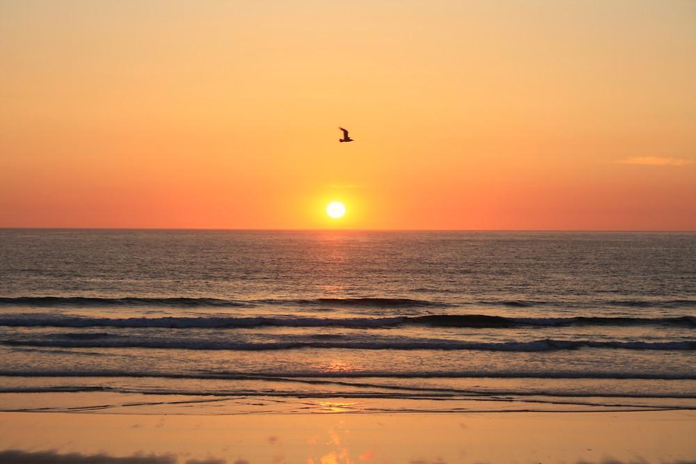 surf and yoga retreat cornwall