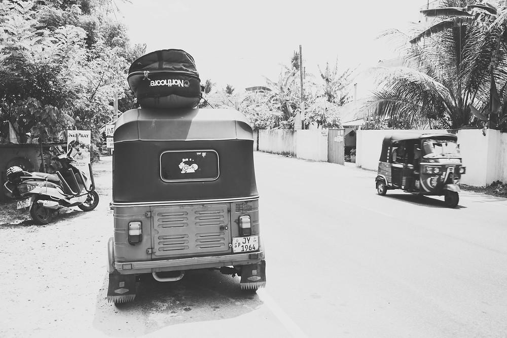 sri lanka northcore wild and free blog