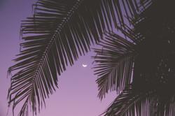 Costa rica surf and yoga retreat