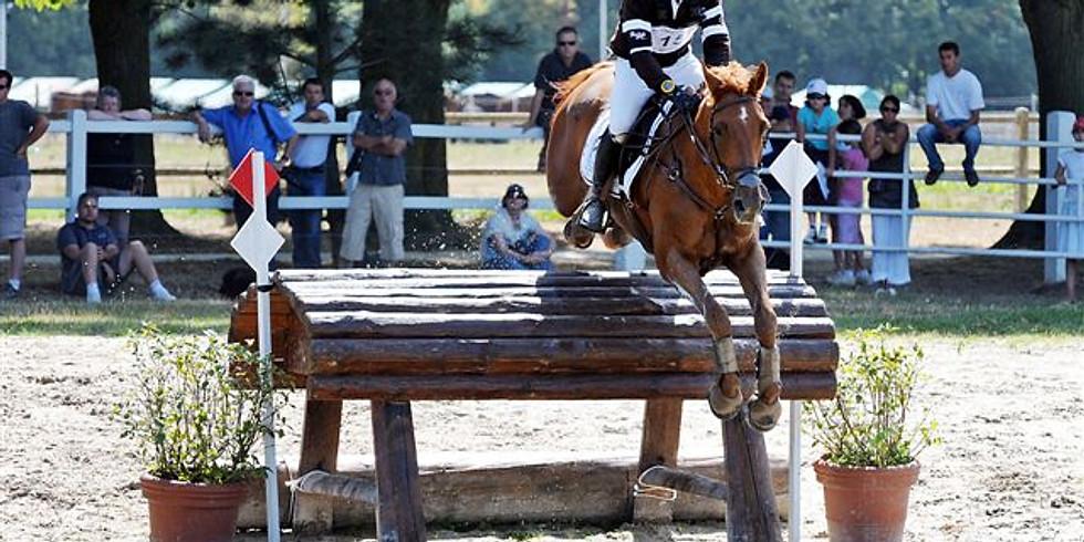 Journée découverte de l'équitation au Haras de Jardy
